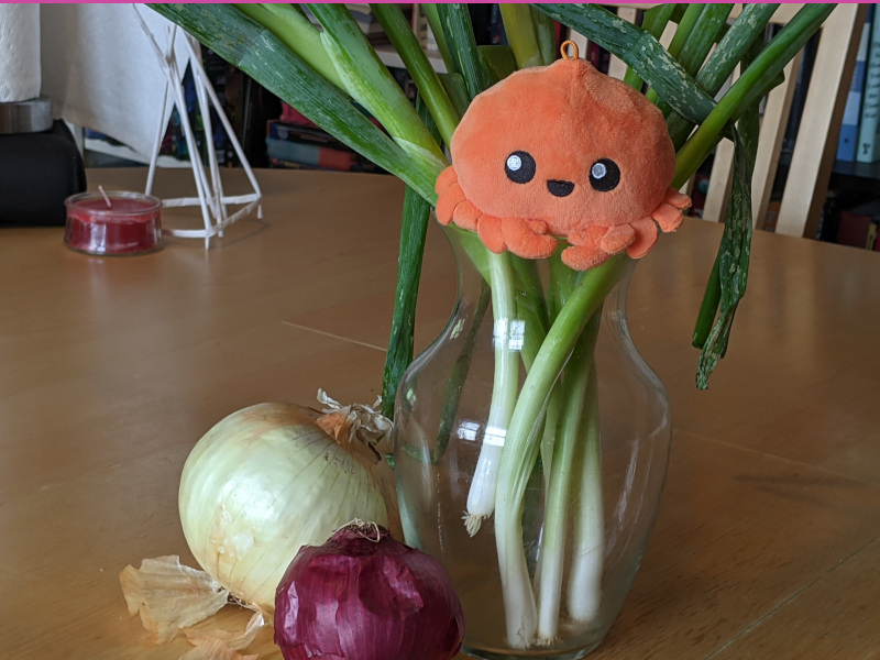 assets/static/images/blog/ferris-and-onions_0.jpg