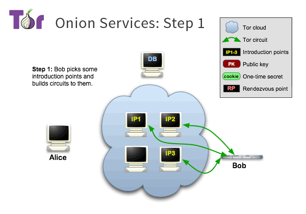 assets/static/images/onion-services/overview/tor-onion-services-1.png