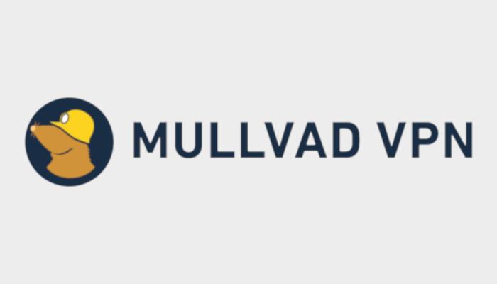 assets/static/images/sponsors/Mullvad_logo.png
