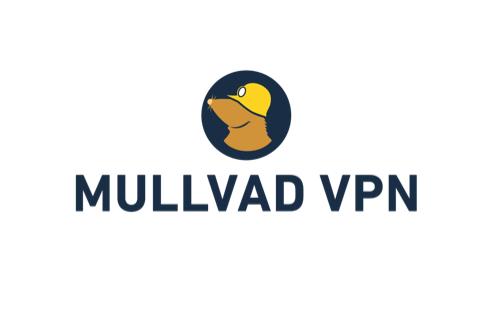 assets/static/images/membership/logos/mullvad.png